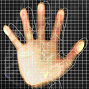 Pachet de pontaj cu identificare palma